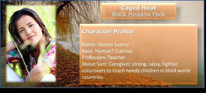 Character Profile Sam
